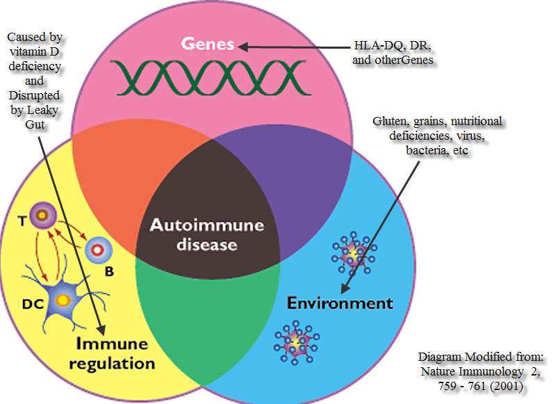 Autoimmune disease diagram1 111121